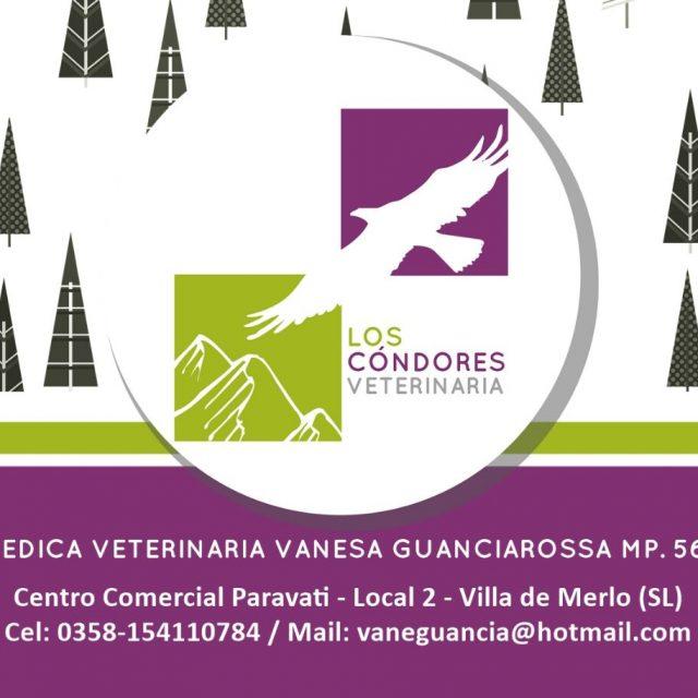 Veterinaria – Los Cóndores – de Vanesa Guanciarossa